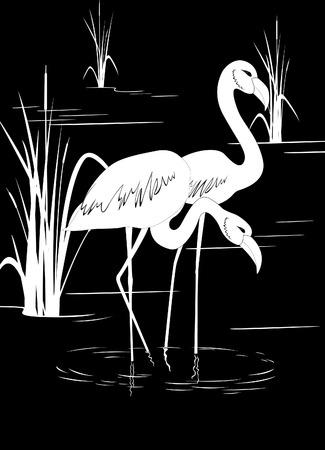 Flamingo on lake Illustration