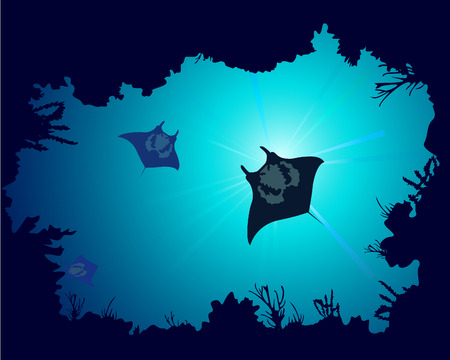 Background of a coral reef with manta ray Vector