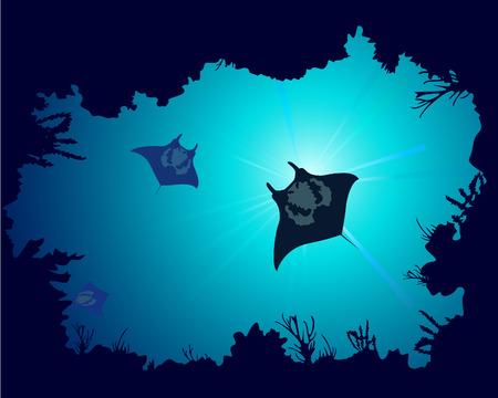 raggi di luce: Sfondo di una barriera corallina con manta ray Vettoriali