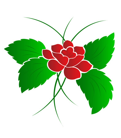 Pattern of a flower a rose Vector