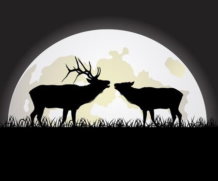 Deer against the Moon Illustration