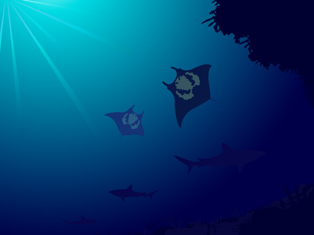 Underwater world with coral reef, sharks and manta ray Vector