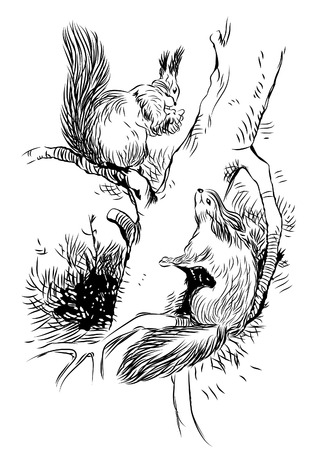 Vector image of squirrels on tree Vector