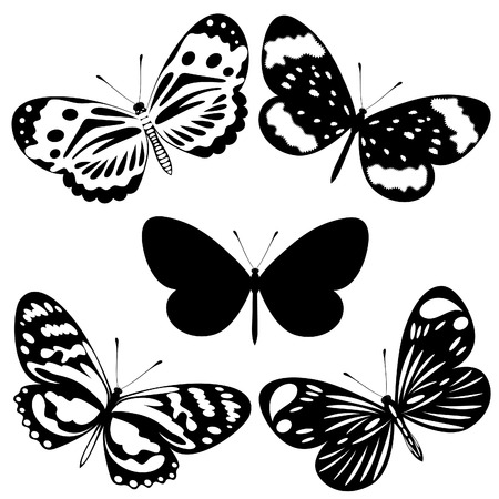 tribal wings: Set  black white butterflies of a tattoo  Illustration