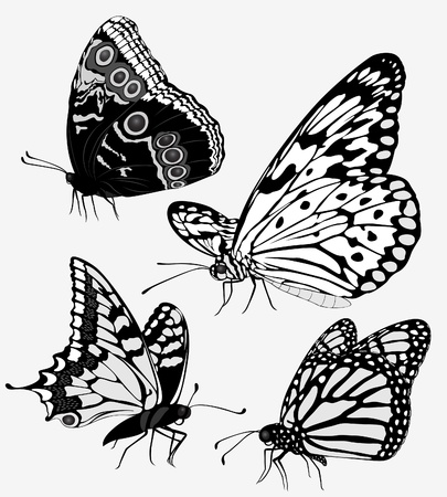 Set black white butterflies of a tattoo Stock Vector - 9289113