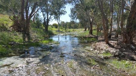 Il bellissimo fiume naturale a Cipro