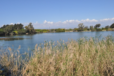 The beautiful natural Wetland landscape in Cyprus