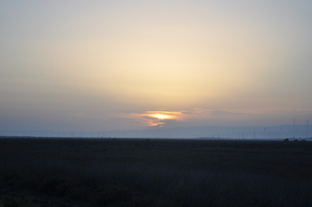 The beautiful natural Wetland Limassol Salt Lake landscape in Cyprus