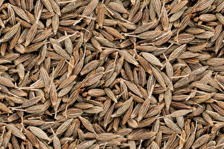 Cumin Seeds Seamless Texture Pattern Image. Indian Spice Closeup Background with Top View and Tileable