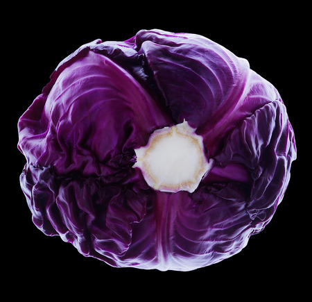 Red Cabbage with rimlight isolated on black