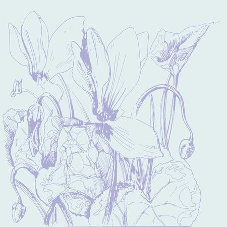 cyclamen: Cyclamen  Sketch  Decorative illustration