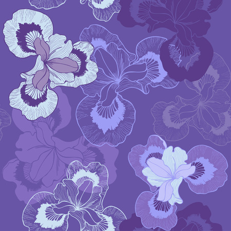 Seamless floral background with iris  Vector