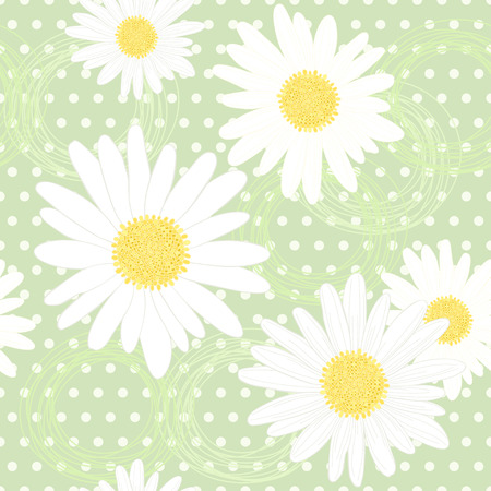 white daisy: Endless background of daisies