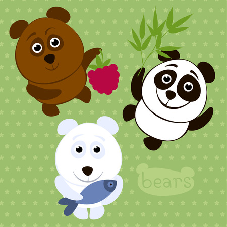 Brown bear, polar bear, panda  Cartoon characters  Vector illustration  Vector