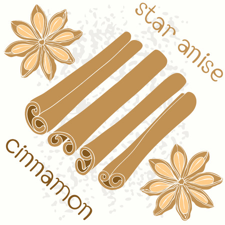cinnamon sticks: Star anise and cinnamon sticks  Seamless vector pattern  Illustration