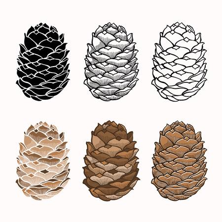 pomme de pin: Vector ensemble de c�nes, six variantes peuvent �tre utilis�s comme un �l�ment de design Illustration