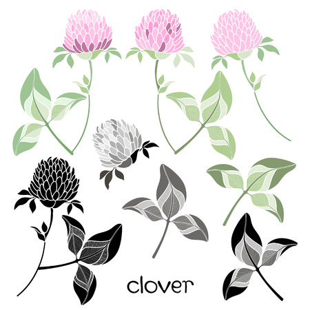 four leafed clover: Ilustraci�n vectorial Clover Puede ser utilizado como un elemento de dise�o