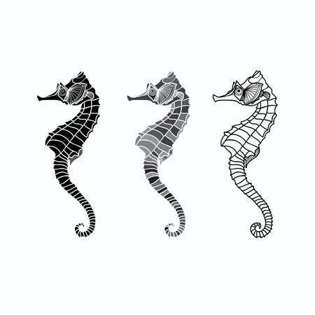 Vector illustration black and white seahorses, three different variants Vector