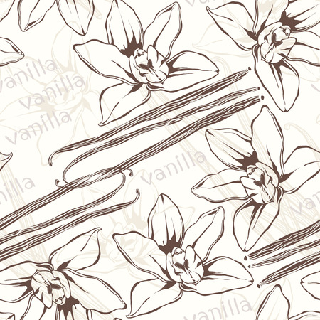 Vanilla pods and flowers. Hand-drawn seamless pattern.