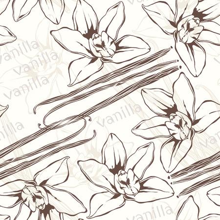 Vainas y flores de vainilla. Dibujado a mano a sin patrón. Vectores