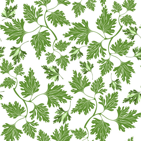 potherb: Seamless pattern with  parsley Illustration
