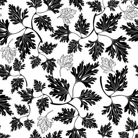potherb: Black and white seamless pattern with  parsley.