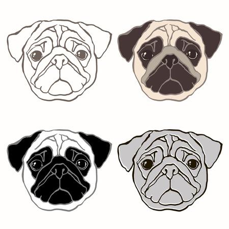 Vector set of  pugs face. Hand-drawn vector illustration. Sketch, four variants.
