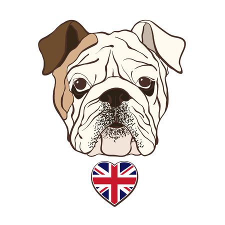 dog pen: English bulldog face with  heart flag UK. Hand-drawn vector illustration, sketch.