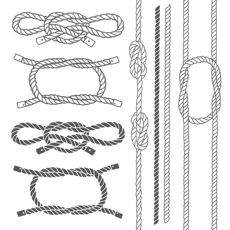 cordage: Set of marine rope, knots. Vector elements on a white background. Hand-drawn vector illustration.