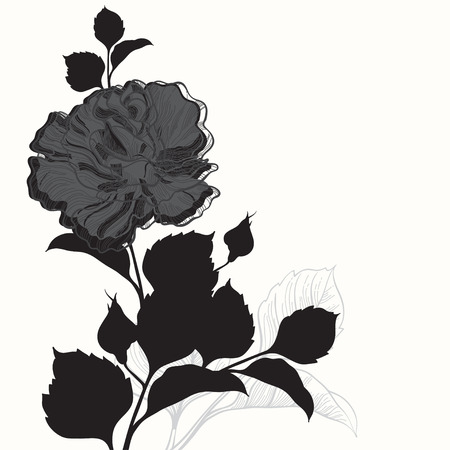 white greeting: Rose. Black and white greeting card or invitation. Vector illustration, can be an element for your design. Illustration