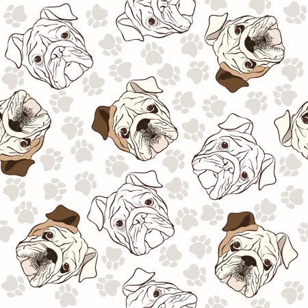 english bulldog: seamless pattern with English Bulldog and traces.