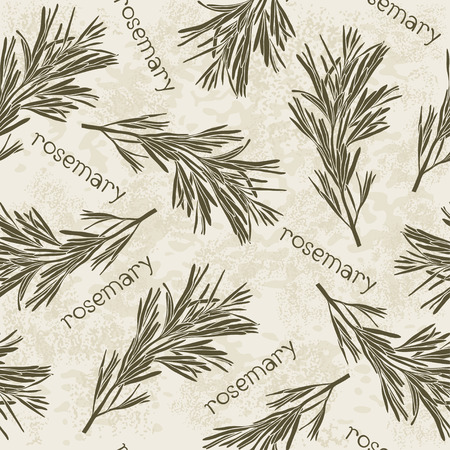 potherb: Seamless pattern with rosemary.