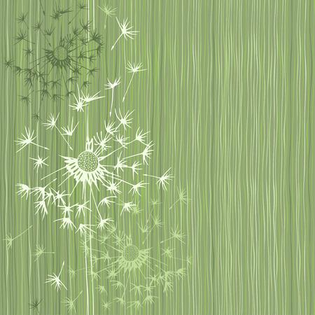 Seamless pattern of dandelion . Hand-drawn floral background,  vector illustration. Ilustrace