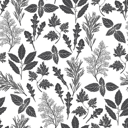 potherb: Seamless pattern with culinary herbs and spices. Black and white vector illustration.