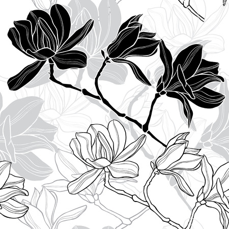 Monochrome  seamless  background with magnolia. Illustration