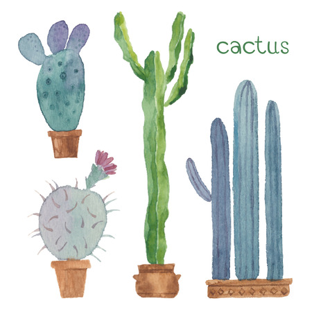 Cactus isolated on white background. Vector, watercolor hand drawn set illustration. Vettoriali