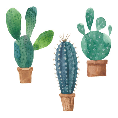 pot: Cactus isolated on white background. Vector, watercolor hand drawn set illustration. Illustration