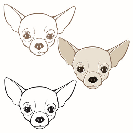 Vector set of  chihuahuas face. Hand-drawn vector illustration. Sketch, three variants.
