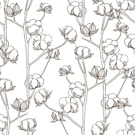 Seamless avec des branches de coton. Vector vintage fond. Illustration