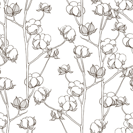 cotton plant: Seamless pattern with cotton branches. Vector vintage background.