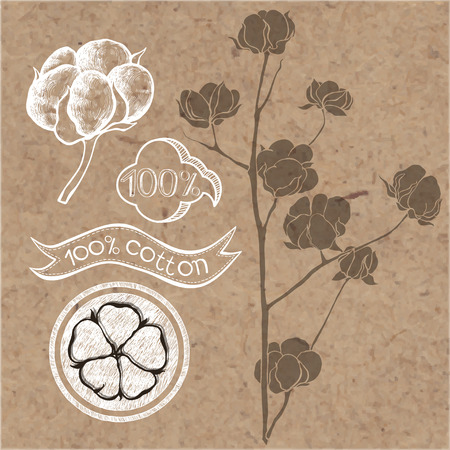 Cotton set. Cotton labels stickers and elements isolated on kraft paper background.