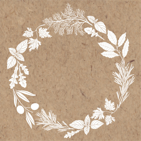 white textured paper: frame with spices and herbs. Illustration