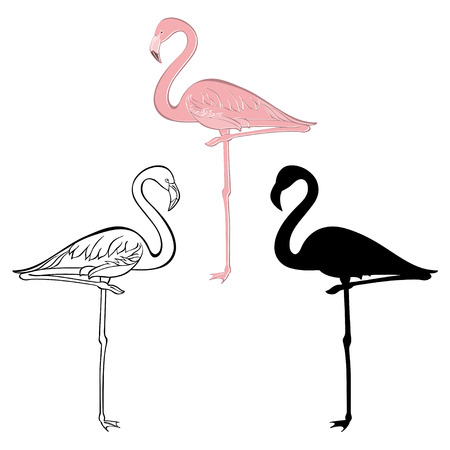 Flamingo. Vector set. Hand drawn illustration, isolated elements for design on a white background.