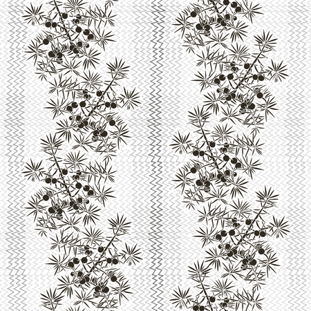 prickly fruit: Monochrome seamless pattern with juniper