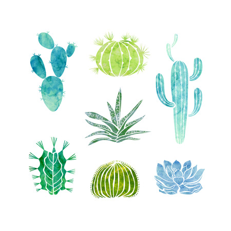 Cactus and succulents isolated on white background. Vector watercolor hand drawn set illustration.