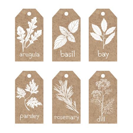 Colección de etiquetas de papel kraft con hierbas culinarias y especias.