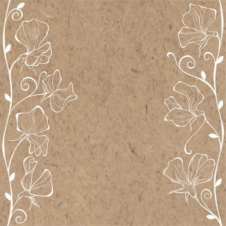 sweet pea: Floral background, illustration with flowers sweet pea and place for text on paper. Can be greeting card, invitation, design element.