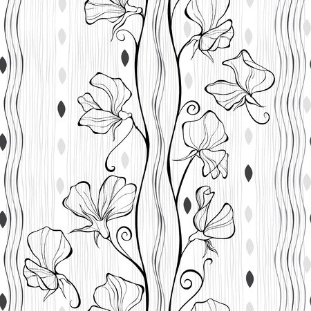 plant delicate: Seamless pattern with flowers of sweet peas. monochrome illustration.