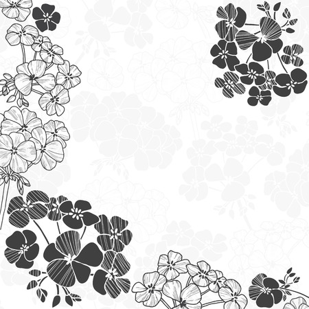 Floral monochrome background with flowers geranium and space for text. Can be greeting cards, invitations, flyers, element for design. Illustration
