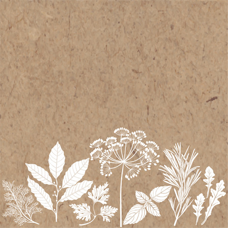 potherb: Vector background with spices and herbs on a kraft paper. Illustration with place for text, can be used creating card, menu or invitation card.